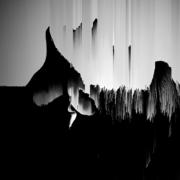 2018 20.30 cm Digitale, stampa su tela Tiratura: 6pz