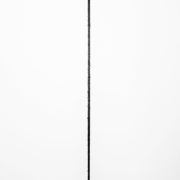2019 100.120 cm Acrilico e carboncino su tela
