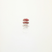 2017 80.120 cm Acrilico e cortecce su tela