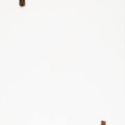 2017 83,5.54,5 cm Corteccia e acrilico su legno